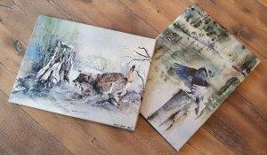 Die Wild life Aquarelle mit einem Wolf - Winterspiel - und einem Kormoran - Nach dem Morgenbad - als Drucke auf Leinwand im Format 36 x 48 cm