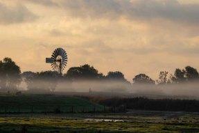 Nebel auf den Wiesen des Mönchguts (c) Frank Koebsch (1)