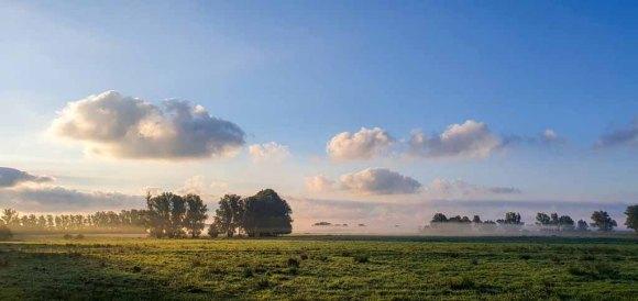 Nebel auf den Wiesen des Mönchguts (c) Frank Koebsch (2)
