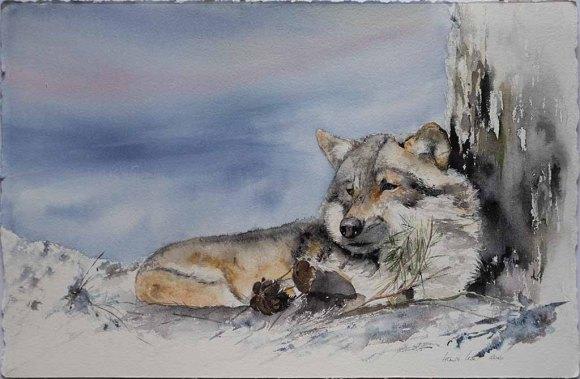 Es weht ein kalter Wind © ein Wolfs Aquarell von Hanka Koebsch