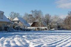 Winter auf den Feldern von Sanitz (c) FRank Koebsch