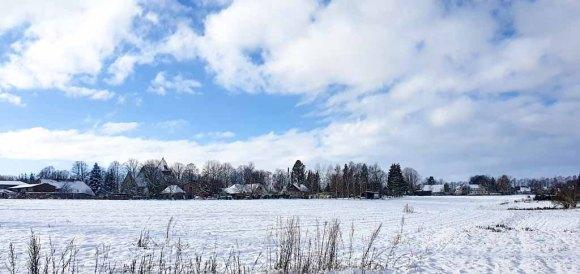 Winter in Sanitz (c) Frank Koebsch (3)