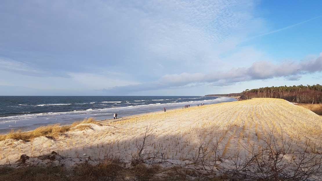 Blick über die Dunen auf die Ostsee am Darßer Weststrand (c) Frank Koebsch