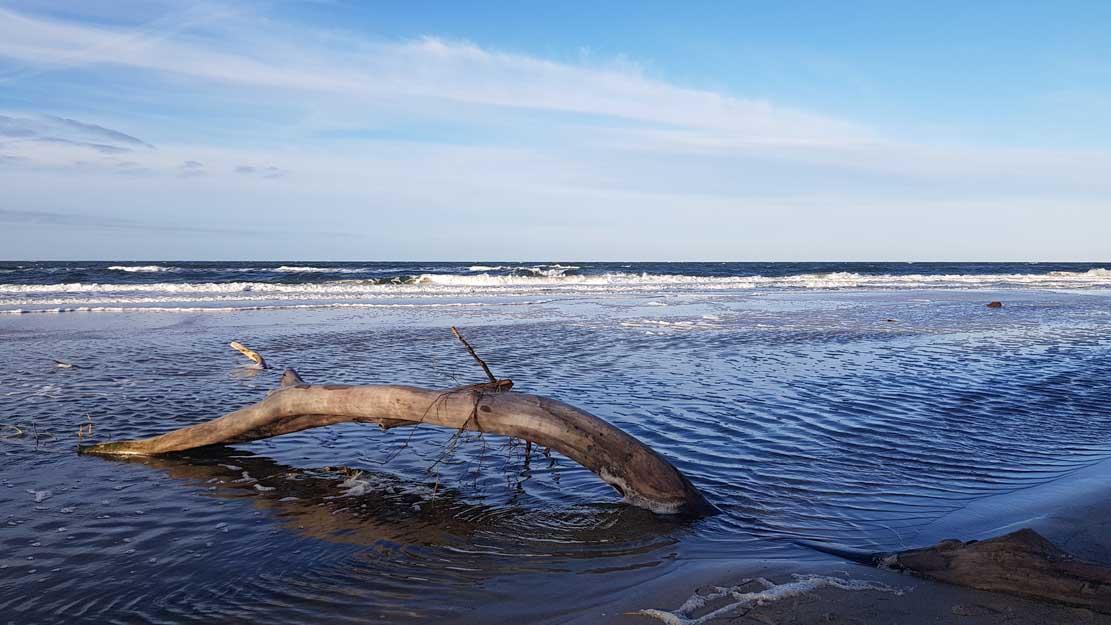 Die Ostsee am Darßer Weststrand (c) FRank Koebsch