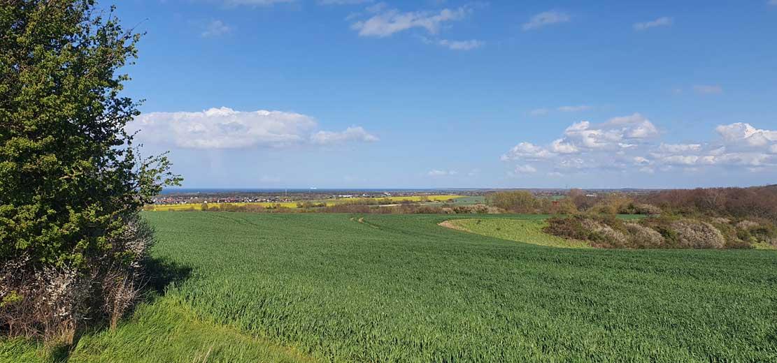 Blick vom Signalberg auf die Ostsee (c) Frank Koebsch (3)