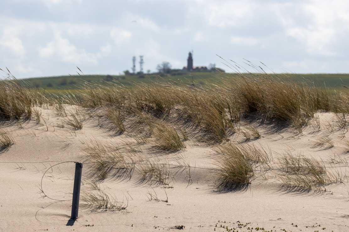 Blick von der Ostsee auf den Leuchtturm Bastorf (c) Frank Koebsch (1)
