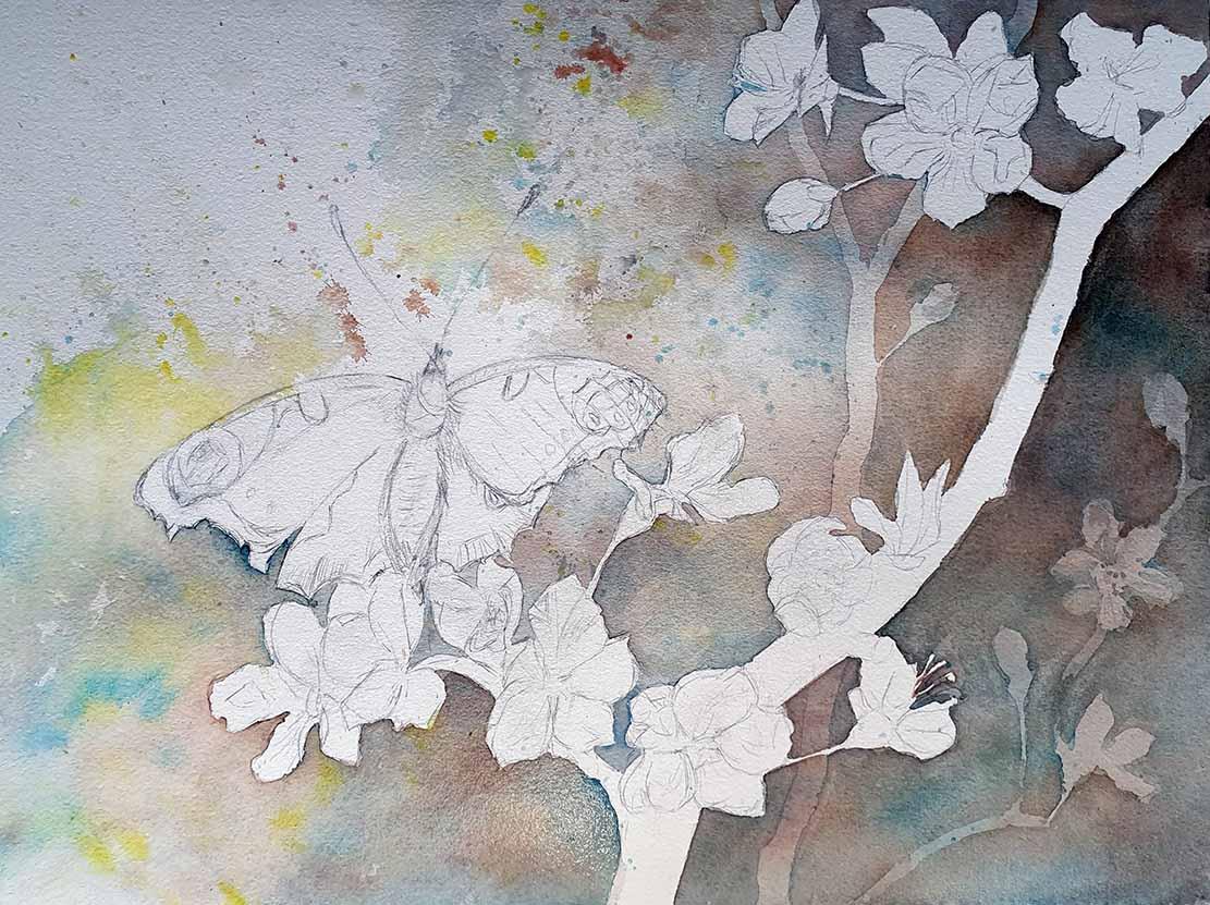 """Das Aquarell """"Ein Schmetterling nascht an den ersten Obstblüten"""" entsteht – Farbspritzer lockern den Hintergrund auf © Frank Koebsch"""