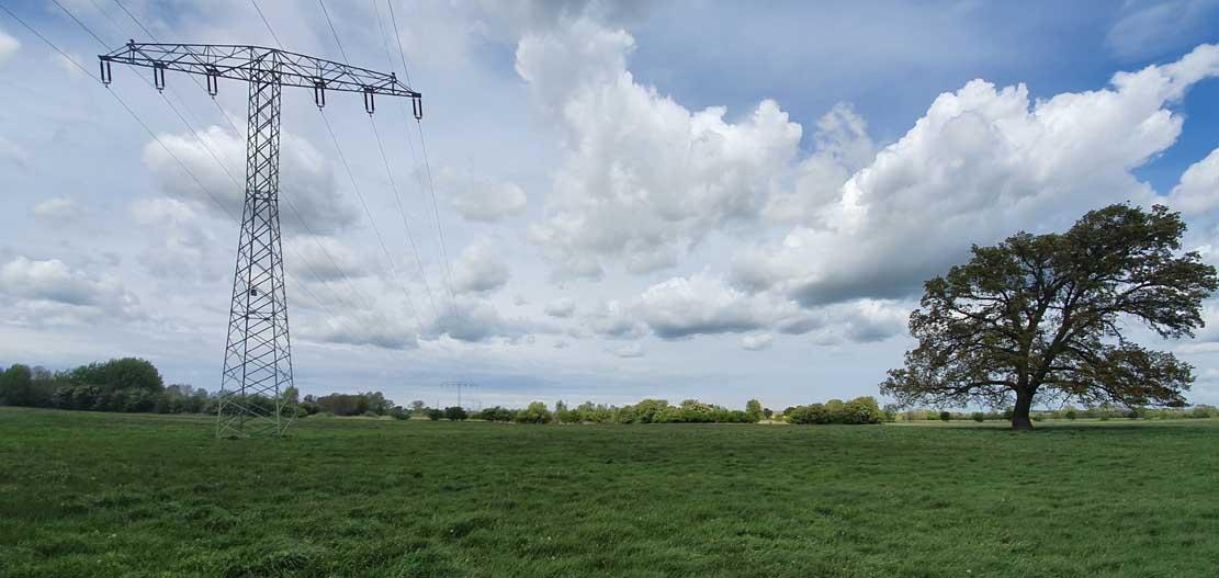 Hochspannungsmast mit Nisthilfe für Turmfalken © Frank Koebsch (1)