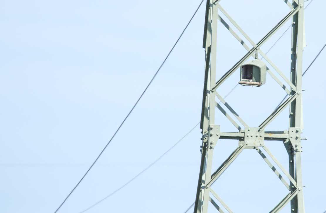 Hochspannungsmast mit Nisthilfe für Turmfalken © Frank Koebsch (4)