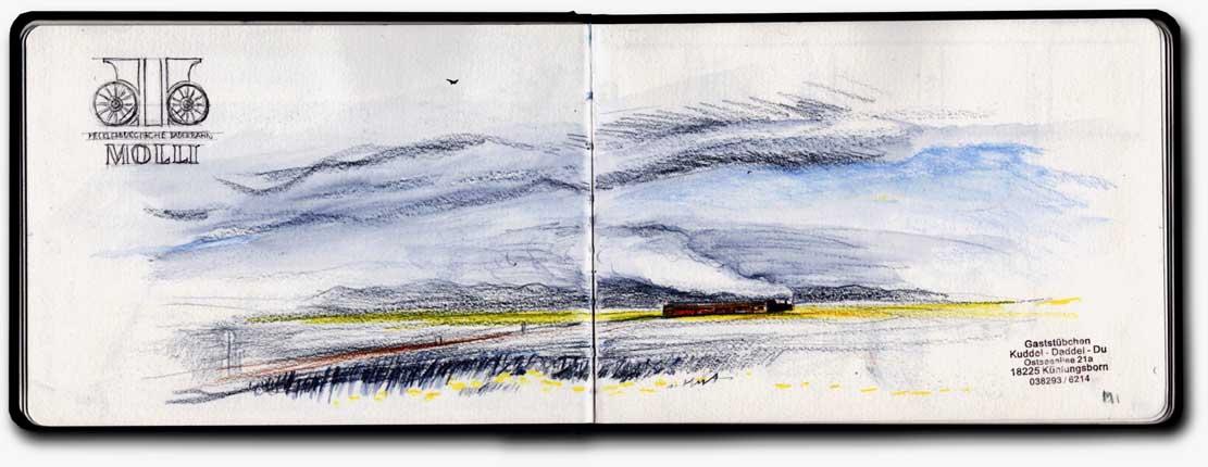 Molli in den Feldern bei Kühlungsborn © Jens Hübner