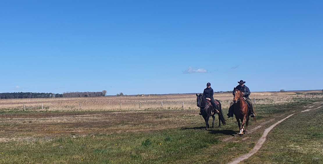Reiter auf den Boddenwiesen bei Wustrow (c) Frank Koebsch (1)
