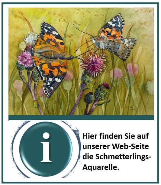 Schmetterlingsaquarelle