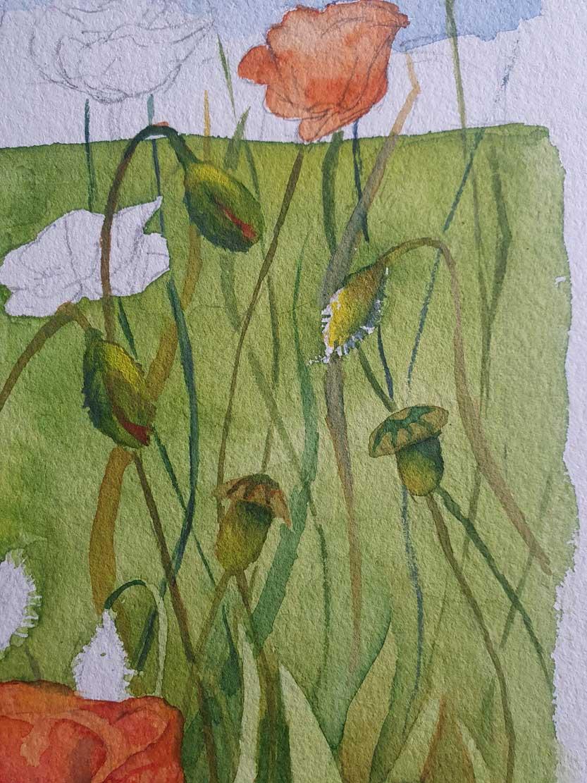 Details aus dem Aquarell - Bunte Sommerwiese (c) Frank Koebsch (2)