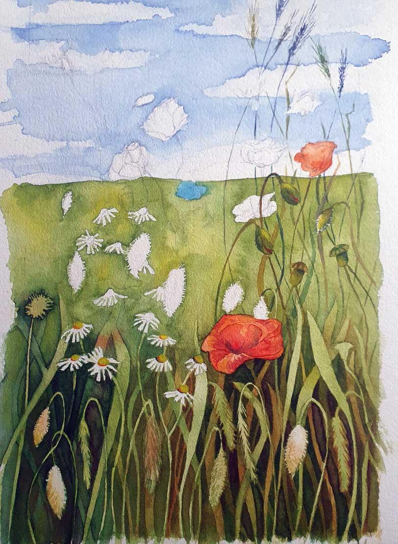Die ersten Gräser wachsen in den Himmel (c) FRank Koebsch
