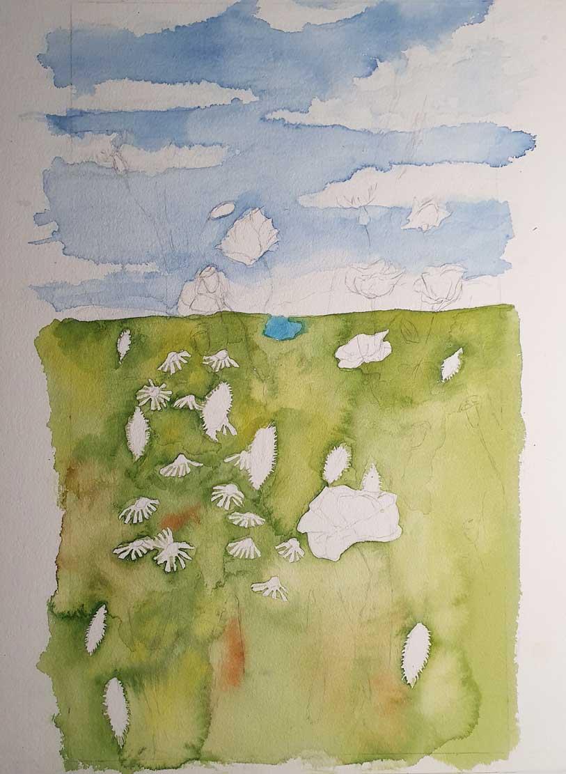 Himmel und erster Farbauftrag für die Sommerwiese (c) Frank Koebsch