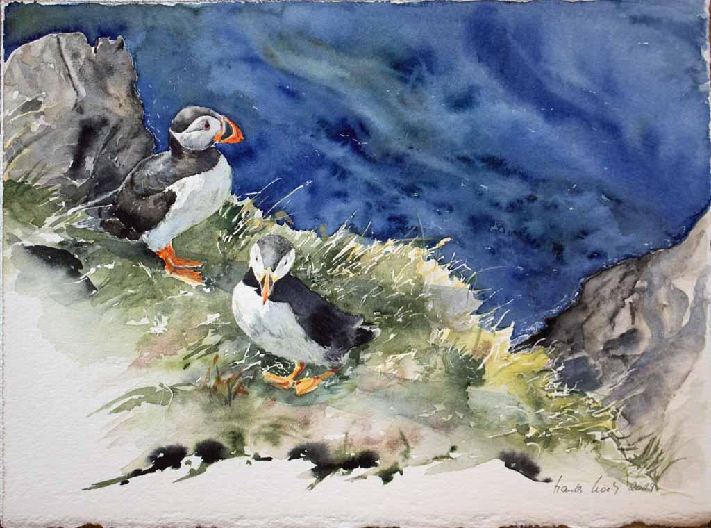 Was für ein Ausblick (c) Aquarell mit Papageitaucher von Hanka Koebsch