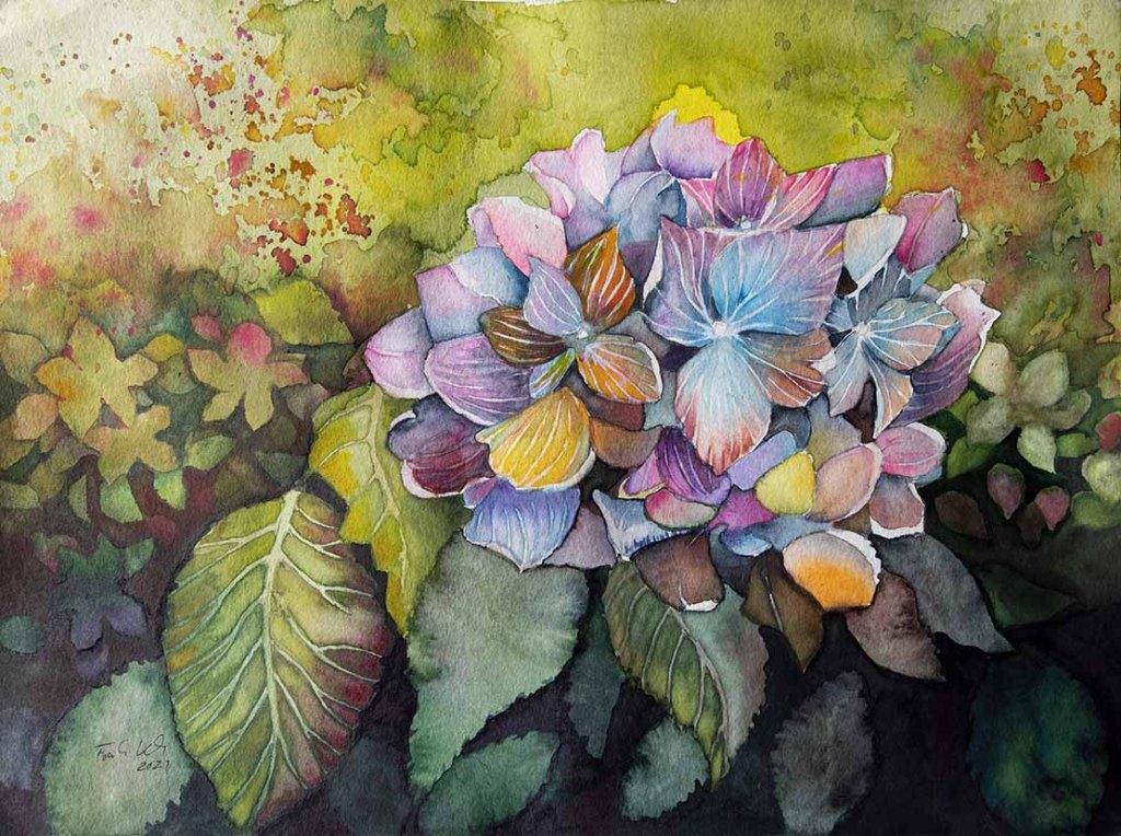 Hortensie im Herbstlicht (c) Aquarell von Frank Koebsch