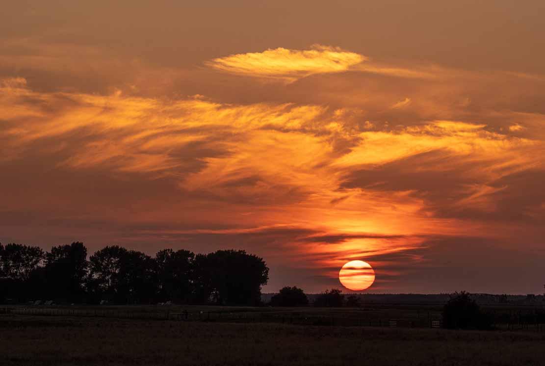 Sonnenuntergang über den Boddenwiesen an der Barther Oie (c) FRank Koebsch (3)